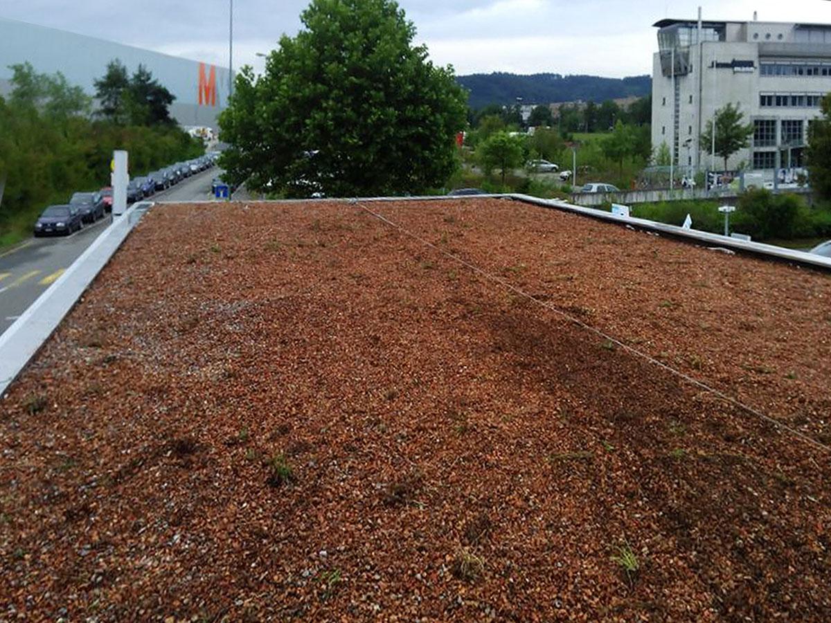 impermeabilizzazioni giardini pensili